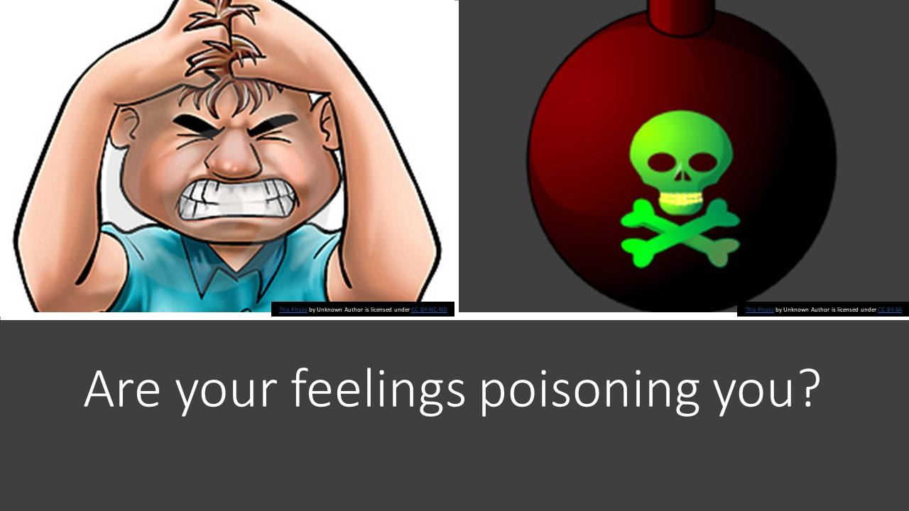 Harboring Anger and Stress toward a Family Member or Co-Worker?