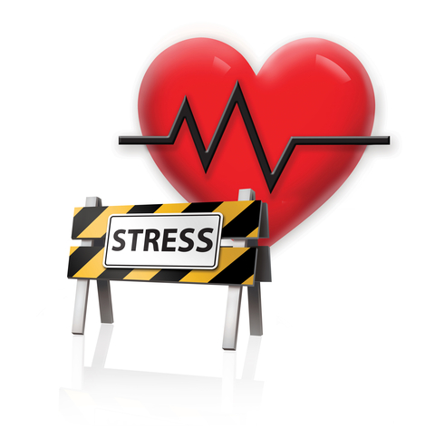 the effect of stress on physical Record and analyze their physical and mental reactions to the stressful situation   science experiment aimed at getting them to feel the effects of stress.