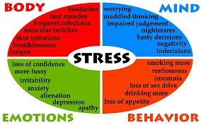 an analysis of the effects of stress on physical illness Studies focused on early-life maltreatment (ie, physical and emotional abuse and neglect, sexual abuse k = 21), other major adversities (ie, parental conflict and witnessing violence separation from parents and institutionalization parental mental illness and substance abuse illness death of.